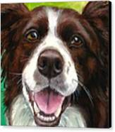 Liver And White Border Collie Canvas Print by Dottie Dracos