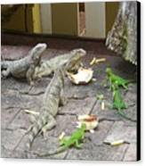 Lizards At Lunch Canvas Print