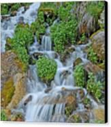 Logan Canyon Cascade Canvas Print