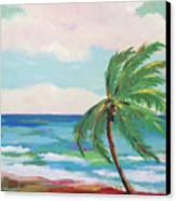 Lone Palm On The Beach Canvas Print