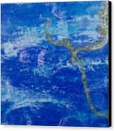 Lone Seahorse Canvas Print by Kristen Ashton