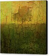 Lone Tree In Meadow -textured Canvas Print