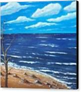 Lone Tree Seascape Canvas Print