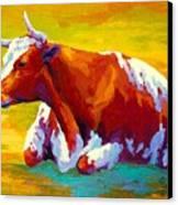 Longhorn Cow Canvas Print