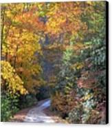 Lost Road Canvas Print by Bob Jackson