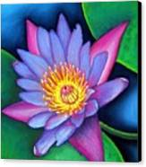 Lotus Divine Canvas Print