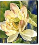 Lotus In Blooms Canvas Print