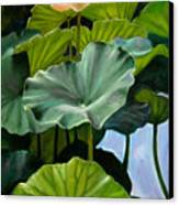 Lotus Rising Canvas Print