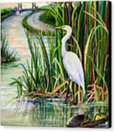 Louisiana Wetlands Canvas Print by Elaine Hodges
