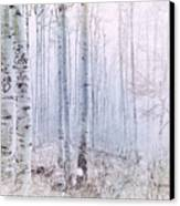 Love Amidst The Aspens Canvas Print
