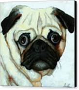 Love At First Sight - Pug Canvas Print