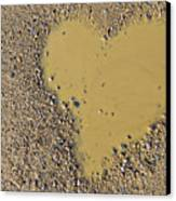 Love In A Muddy Puddle Canvas Print by Meirion Matthias