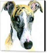 Love That Whippet Canvas Print