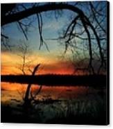 Luminous Essence  Canvas Print