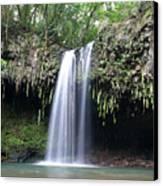 Lush Tropical Waterfall Twin Falls On Maui Hawaii Canvas Print