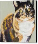 Maggie Mae Canvas Print