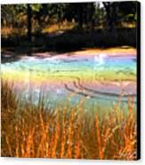 Magic Pond Canvas Print
