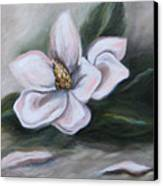 Magnolia Two - 2007 Canvas Print