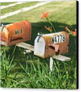 Mail Boxes  Canvas Print