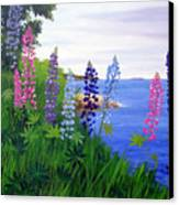 Maine Bay Lupine Flowers Canvas Print