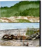Maine Beach Wood Canvas Print