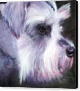 Maizee Canvas Print