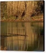 Mammoth Spring Arkansas Canvas Print