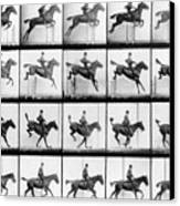 Man And Horse Jumping Canvas Print by Eadweard Muybridge
