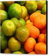 Mandarins And Tangerines Canvas Print