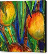 Mango Tree Canvas Print by Julie Kerns Schaper - Printscapes