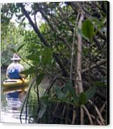 Mangrove Kayaker Canvas Print by Steven Scott