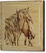 Maple Horse Canvas Print