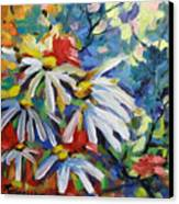 Marguerites Canvas Print