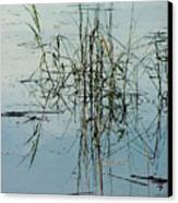 Marsh Grass Canvas Print