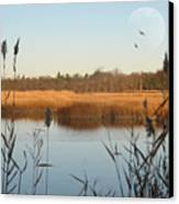 Marshland Canvas Print by Diana Lee Angstadt