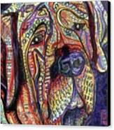 Mastiff Canvas Print by Robert Wolverton Jr