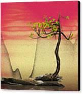 Math Pine 2 Canvas Print by GuoJun Pan