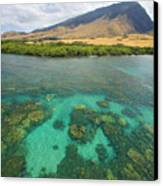 Maui Landscape Canvas Print by Ron Dahlquist - Printscapes