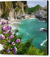 Mcway Falls Canvas Print by Buck Forester