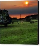 Meadow Field Canvas Print