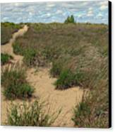 Mentor Headlands Beach Trail Canvas Print