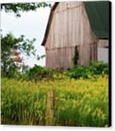 Michigan Barn Canvas Print by Michael Peychich