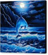 Midnight Play Canvas Print