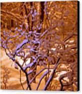Midnight Snow Canvas Print