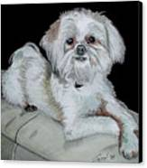 Miki Dog Canvas Print