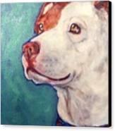 Mini Canvas Print by Sheila Tajima
