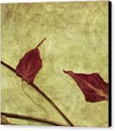 Minimal Art Canvas Print