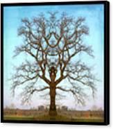 Mirror Tree Canvas Print