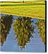 Mirroring Trees Canvas Print by Heiko Koehrer-Wagner
