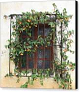 Mission Window With Yellow Flowers Canvas Print